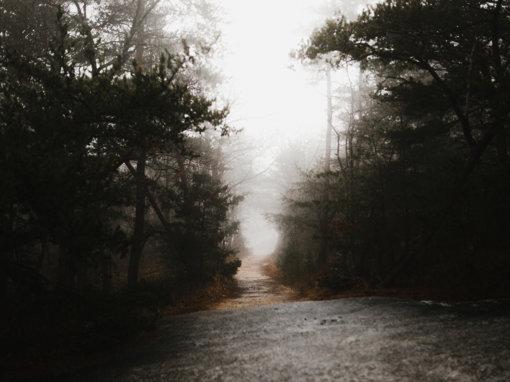 Creepy Trail